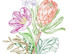 """Check out new work on my @Behance portfolio: """"Bouquet with Protea"""" http://be.net/gallery/47661225/Bouquet-with-Protea"""