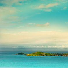 * Берега Новой Зеландии...