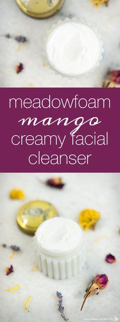 Meadowfoam Mango Creamy Facial Cleanser - Humblebee & Me Homemade Scrub, Homemade Facials, Homemade Beauty, Diy Beauty, Baking Soda Exfoliant, Oatmeal Scrub, Mango, Natural Exfoliant, Natural Soaps