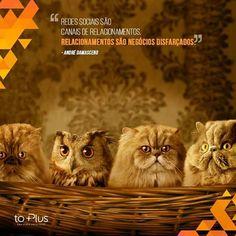 A Agência Digital toPlus deseja que o seu dia seja maravilhoso com muitas realizações e conquistas! =D www.toplus.com.br  #ÓtimoDia #Realizações #Conquistas #Design #Publicidade #VidaemAgência #toPlus #toPlus2015