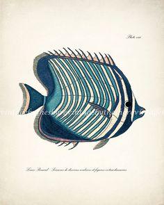 Fish Print Vintage Fanciful Fish Coastal by vintagebytheshore
