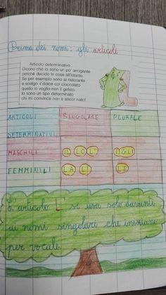 Classe Seconda-Italiano-Aprile: Gli articoli - Maestra Anita