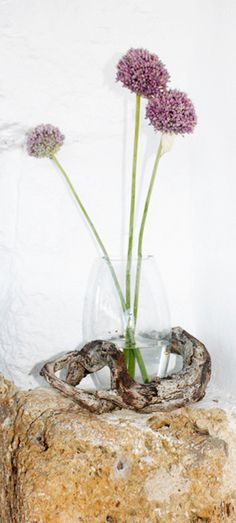 Glass vase with garlic flowers and a dry piece of wood