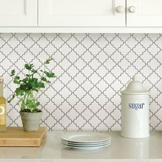 InHome Quatrefoil Peel and Stick Backsplash Tiles at Lowe's. These peel and stick tile panels have a classic Moroccan quatrefoil style. The clean white tile and grey grout lines are perfect for a modern home. Self Adhesive Backsplash Tiles, Stick Tile Backsplash, Splashback Tiles, Herringbone Backsplash, Mosaic Tiles, Backsplash Ideas, Backsplash Wallpaper, Black Backsplash, Backsplash Arabesque
