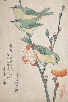 Kubo Shunman  Japanese White Eyes Perching on Peach Tree  19th century