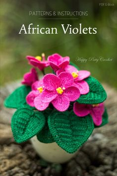 Crochet African Violets Pattern by Happy Patty Crochet // Crochet Pattern for Home Decor