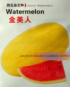 1 Original Pack, 100 seeds / pack, Great Quality Yellow Skin Red Juicy Fruit F1 Hybrid Watermelon Seeds for Summer