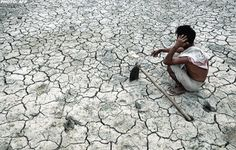 A famine is a period of severe food shortage after a drought..