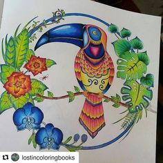 #Repost @lostincoloringbooks with @repostapp ・・・ Sir Wallace Wallaby the Tucan is done!  #magicaljungle…