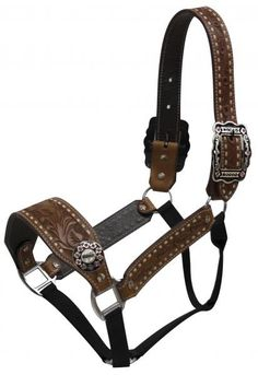 """Showman ® Belt Halter with Rodeo Conchos and Buckles. Full size floral tooled belt style halter features medium oiled floral tooled leather accented with white buck stictching. Large engraved """" Rodeo"""""""