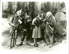 Judy Garland Cowardly Lion Scarecrow Tin man The Wizard of Oz movie photo 8493