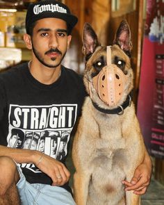 Lotus di Acquanegra 🔥👑 #malinois #attack #dog #guard #malinois #gun #super #lotus #k9#belgin #police #rottweiler #germansheperd #germany #lover #show #doberman #malinois #toys #dogslover #saudi #qatar #oman #kuwait #uae #BELGIN #gulf #country #live #club #dcsbh #malinois