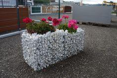Blumen-Gabione Plants, Flowers, Plant, Planets