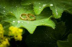#weddings <3   Helsingin Hääkuvaus www.helsinginhaakuvaus.fi Heart Ring, Weddings, Rings, Fashion, Moda, Fashion Styles, Wedding, Ring, Heart Rings