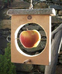 Even birdies need a HEALTHY SNACK!