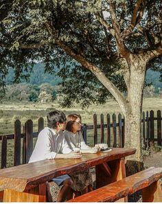 Taman NasionalAlas Purwoatau Alas Purwo National Park merupakan salah satu kawasan bagi ratusan jenis flora dan fauna di Indonesia. Alas Purwo terletak di ujung tenggara Pulau Jawa, yaitu Banyuwangi, Jawa Timur. National Parks, Wings