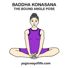 baddha padmasana locked lotus yogic pose  asana or yogic