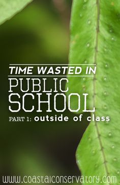 Are you a homeschooler who thinks she is not doing as much as the public schools are doing? Let me put your mind at ease!