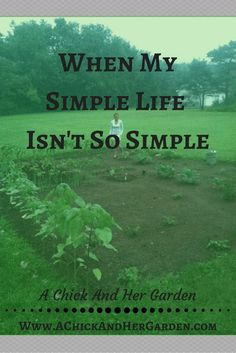 When My Simple Life Isn't So Simple - Excepting That I Don't Have To Do It All ~ A Chick And Her Garden