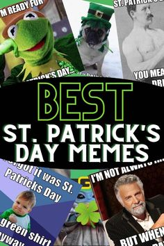 Celebrate March 17 st patty's day with green beer and funny memes!