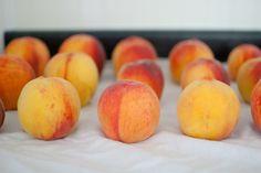 Preserving: Freezing Peaches