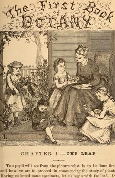 Natural Remedies From The Victorian Era