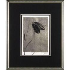 Phoenix Galleries Silver Stem 1 Framed Print - EL1001