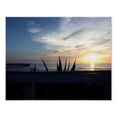 Agave Cactus Ocean Sunrise Photo Poster - photo gifts cyo photos personalize