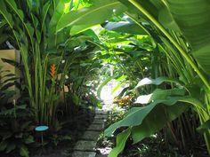 florida garden ideas
