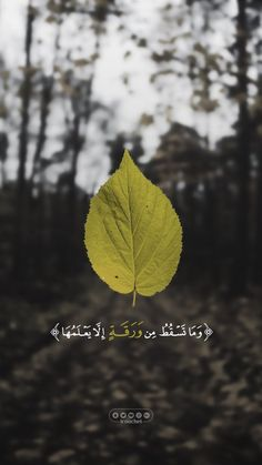 Quran Quotes Inspirational, Quran Quotes Love, Islamic Love Quotes, Muslim Quotes, Religious Quotes, Arabic Quotes, Wisdom Quotes, Life Quotes, Beautiful Quran Verses