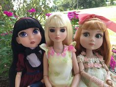 Once Upon A Doll Collection : Ellowyne, Patience & Maudlynne Tonner Wilde Imagination