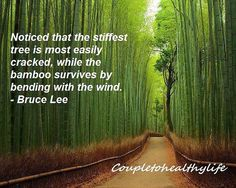 In the current management context, we have to be firm with our decisions, but flexible in our approach. #japan #travel #bambooforest #arashiyama #motivation #keepfighting #positive #quotes #determined #mindset #life #nevergiveup #believe #nothingisimpossible #success #instaquote #quoteoftheday #motivationalquote #wordsofwisdom #quotestoliveby #beautifulsaying #quotestoinspire #inspiration
