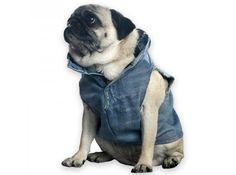 DIY dog vest @Tisha G Hamilton This looks like you Dog Vest, Dog Jacket, Denim Ideas, Denim Crafts, Biker Chic, Recycled Denim, Pug Love, Dog Coats, Scrap