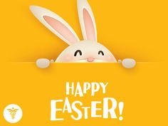 Happy Easter to you and all your families from Howard Medical! National Day Calendar, Happy Easter, Pikachu, Families, Medical, Character, Happy Easter Day, Medicine, Med School