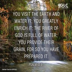 Psalm 65:9  You visit the earth and water it;     you greatly enrich it; the river of God is full of water;     you provide their grain,     for so you have prepared it.