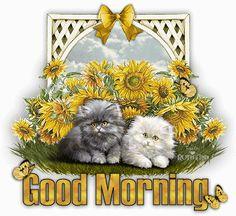 good morning,buongiorno,glitter buon giorno,immagini buon giorno