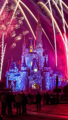 Walt Disney World Fireworks shows are out of this world. Very well executed!