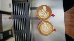 A couple of rosetta's by Barista Libby #rosetta #latte #latteart #coffee #cafe #bundaberg #alowishus