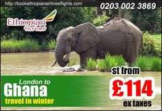 flights to Accra from London st from 114£ ex taxes for more information http://www.bookethiopianairlinesflights.com