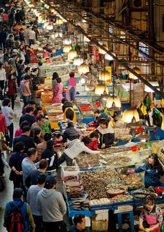Noryangjin Fish Market 노량진 수산 시장 ,Seoul