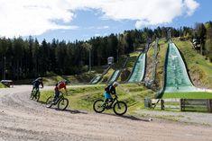 E Mountain Bike, Mtb, Bicycle, Painting, Freiburg, Bike, Bicycle Kick, Painting Art, Bicycles