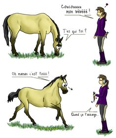 12 Best Humour Cheval Images On Pinterest Horse Humor Horses And