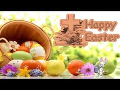Happy Easter Sunday Wishes,Whatsapp,video, Greetings, ECard,Quotes,message,animation,free,download 3 - YouTube Sunday Wishes, Happy Easter Sunday, Easter Religious, Google Images, Easter Greeting, Free, Animation, Quotes, Youtube