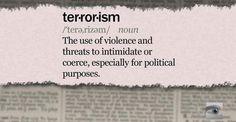 terrorism solutions essay