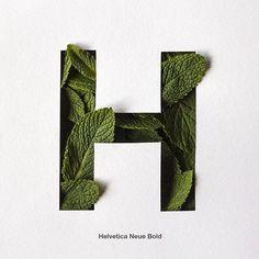 1,842 mentions J'aime, 17 commentaires - @36daysoftype sur Instagram: «#H de hierbabuena y helvetica by @yerayvega7»