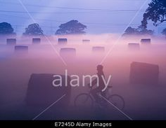 #Billingham, UK, 4th Sep, 2014. #Weather female mountain biker at sunrise as early mist burns off on a glorious morning © AlanDawson/Alamy Live News