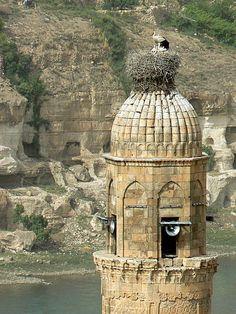 Hasankeyf, Törökország (fészek a minareten) Mascots of the Hasankeyf by setenay Setenay Suzer Turkey