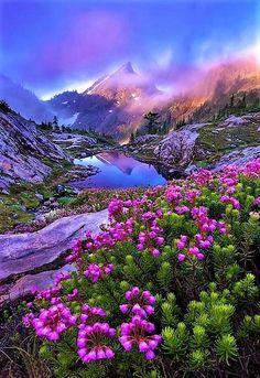 Beautiful Landscape of Nature Image Nature, Nature Photos, Beautiful World, Beautiful Places, Beautiful Rocks, Beautiful Flowers, Nature Scenes, Amazing Nature, Belle Photo