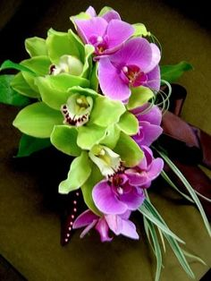 Green cymbidium and pink phalaenopsis