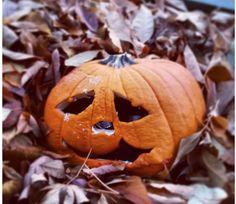 Светильник Джека является неотъемлемым атрибутом любого Хэллоуина. Говорят, что когда вырезаешь светильник Джека из тыквы, он оживает и начинает жить с вами